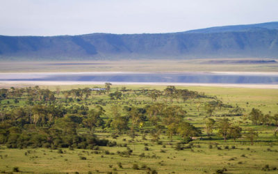 Why The Ngorongoro Crater Needs To Be On Your Bucket List